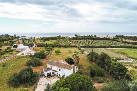 Quinta, Eastern - Tavira, Vila Real de Santo António